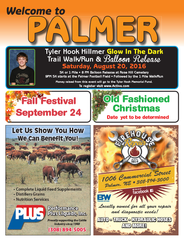 Palmer NE We-Prints Plus Newspaper Insert by Any Door Marketing