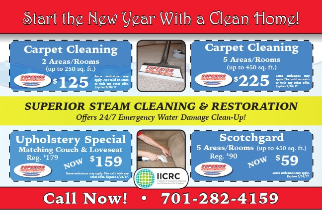 Superior Steam Clean Any Door Direct Mail Piece by Any Door Marketing