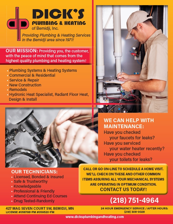 Dick's Plumbing and Heating We-Prints Plus newspaper insert by Any Door Marketing