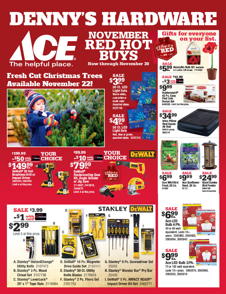 Ace Hardware We-Prints Plus Newspaper Insert by Any Door Marketing