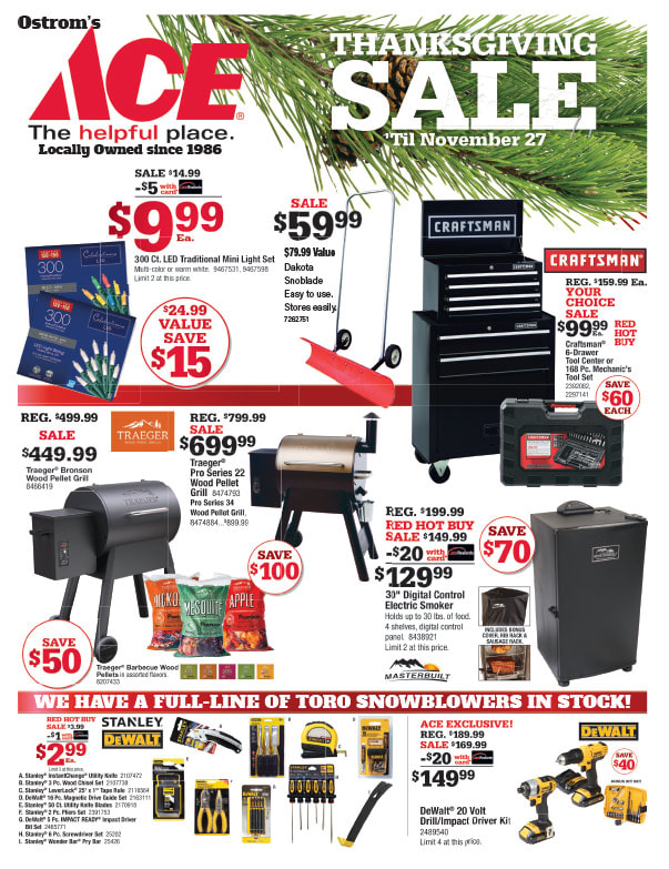 Ace Hardware We-Prints Plus Newspaper Insert printed by Any Door Marketing