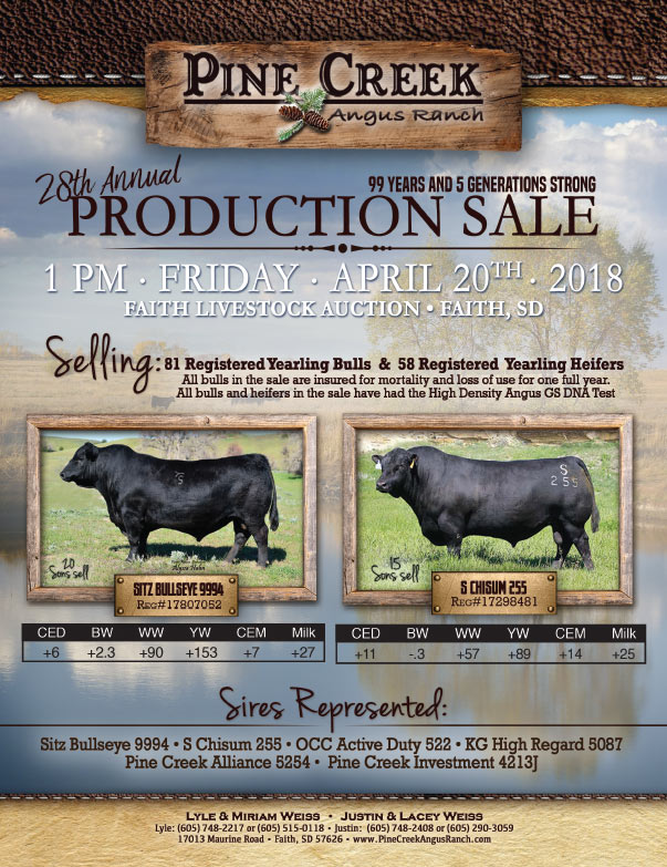 Pine Creek Angus Ranch We-Prints Plus Newspaper insert brought to you by Any Door Marketing