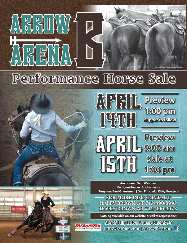 Arrow Arena B We-Prints Plus Newspaper insert brought to you by Any Door Marketing