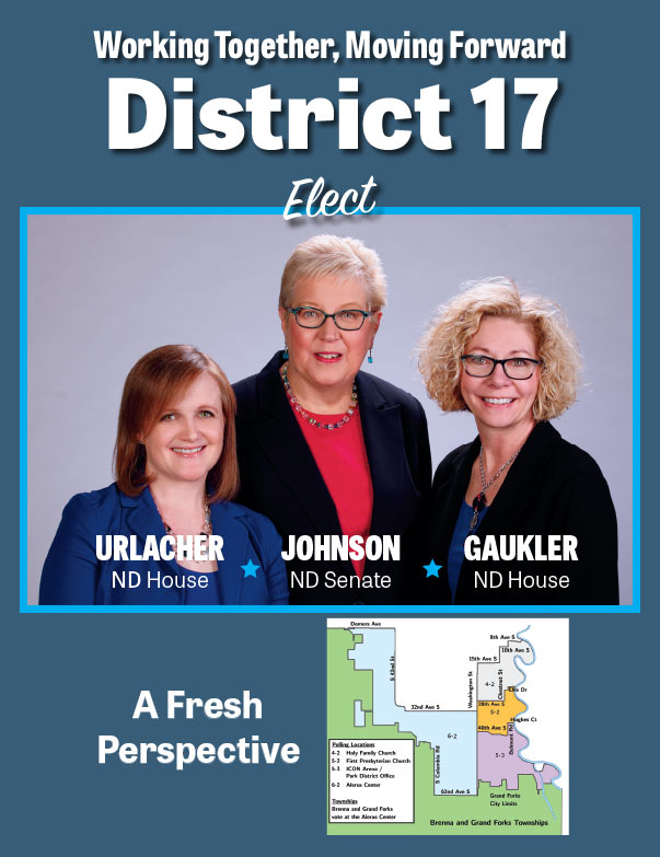 District 17 We-Prints Plus Newspaper Insert printed by Any Door Marketing