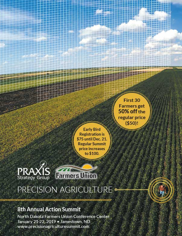 Praxis Strategy Group We-Prints Plus Newspaper Insert Printed by Any Door Marketing