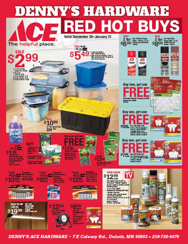 Denny's Ace Hardware We-Prints Plus Newspaper Insert Printed by Any Door Marketing